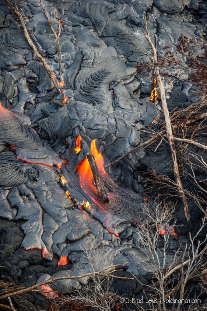 Lava burning wood