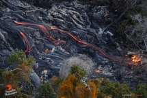 Rivers of pahoehoe consume the last large kipuka in the area, as the flow makes its way down Pulama Pali.