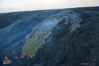 The last large kipuka in the area is being consumed by the flow as it advances down Pulama Pali. The lighter colored lava is the most recent.