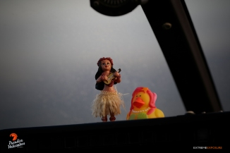 Leilani the Hula Girl and Bikini Lava Ducky enjoyed the flight too!